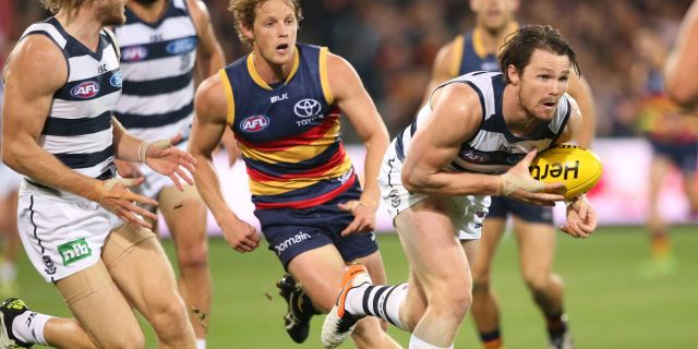 Crunching Numbers: AFL Round 17 Adelaide vs Geelong DFS Lineup Tips