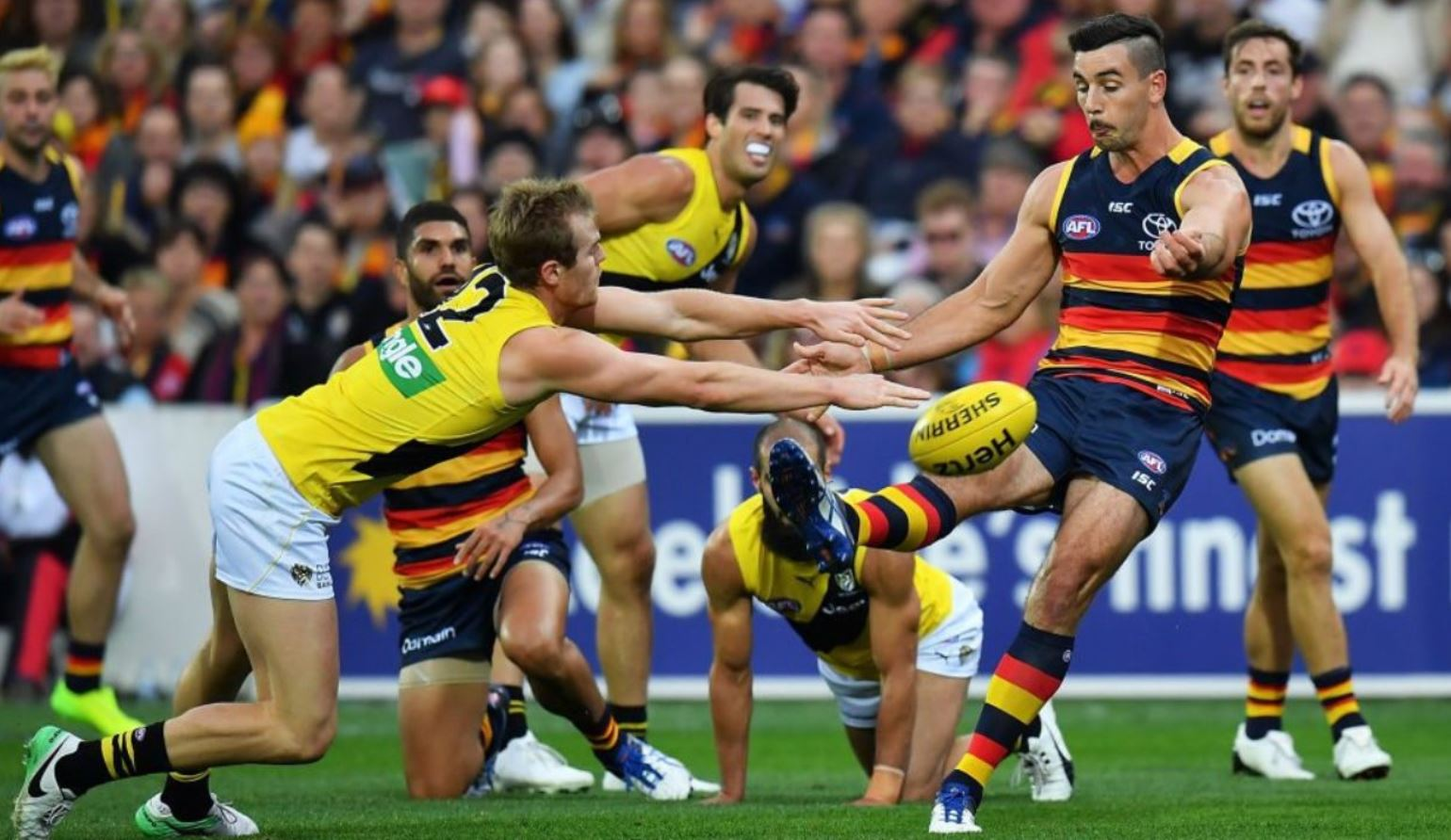 AFL Daily Fantasy Strategy: Steps to Success
