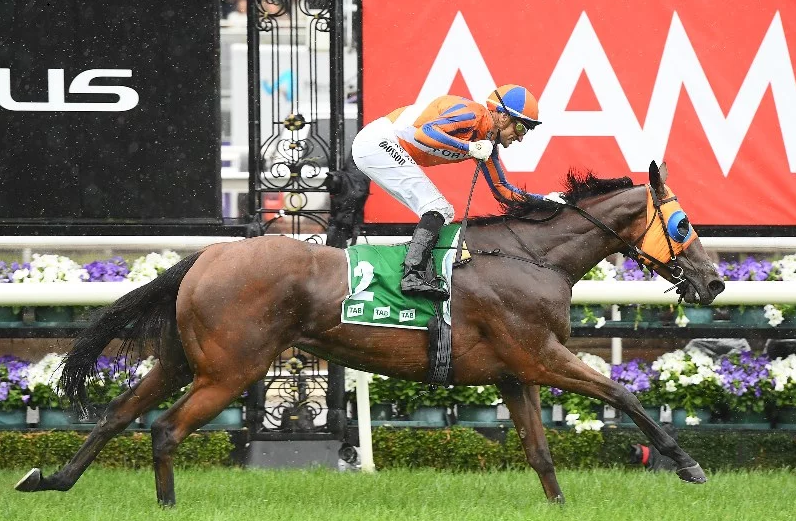 """The Swoopers"" SportChamps Stakes Day 09-11-19"