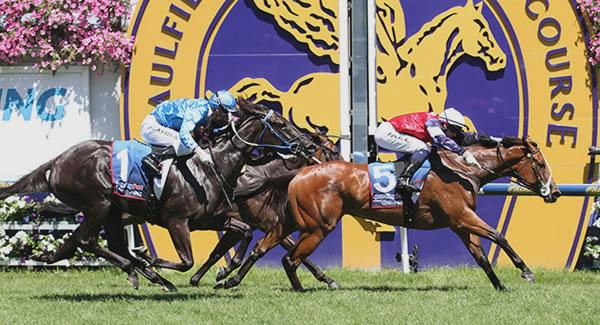 Blue Diamond Stakes Day $30,000 Tournament at TopBetta