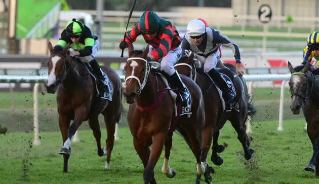 Fantasy Horse Racing Tips: Randwick and Mornington - Saturday September 29th