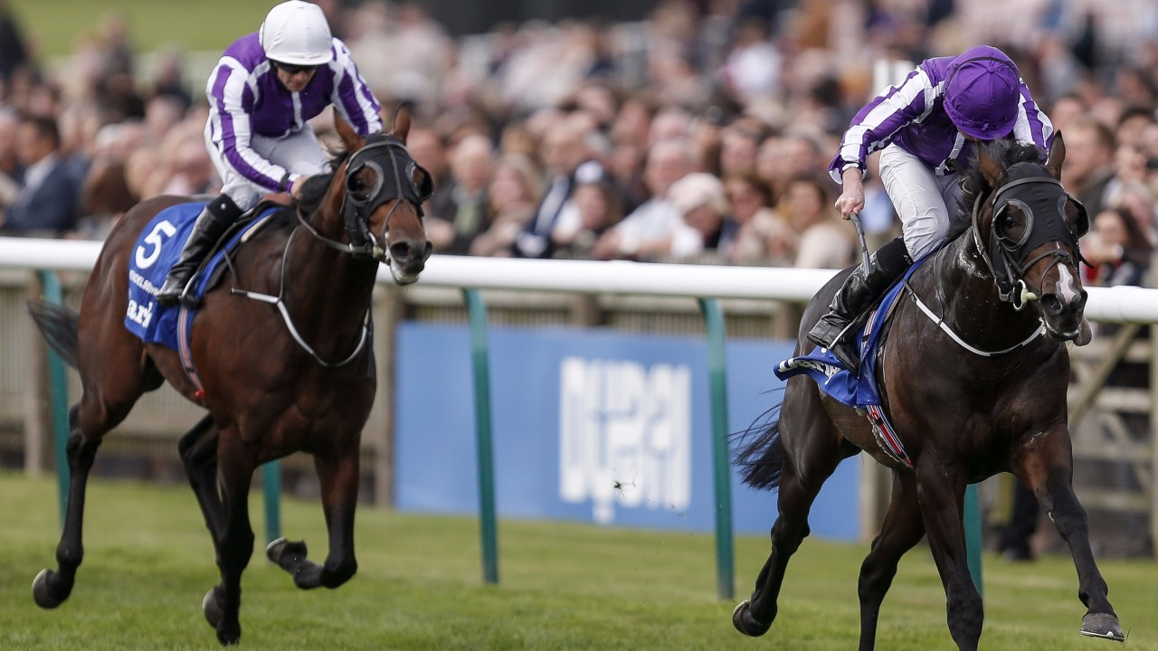 Fantasy Horse Racing Tips: Manikato Stakes Night, Friday October 26th