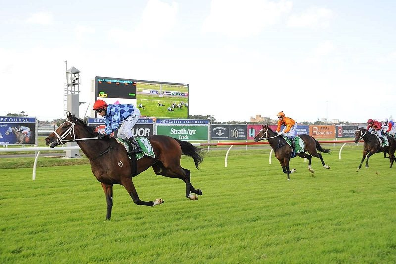 Fantasy Horse Racing Tips: Caulfield Cup Day, Saturday October 20th