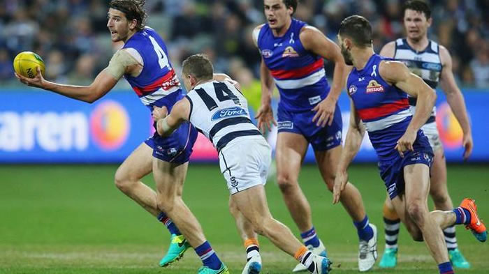 AFL Bulldogs Geelong