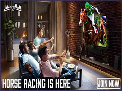 Moneyball horse racing